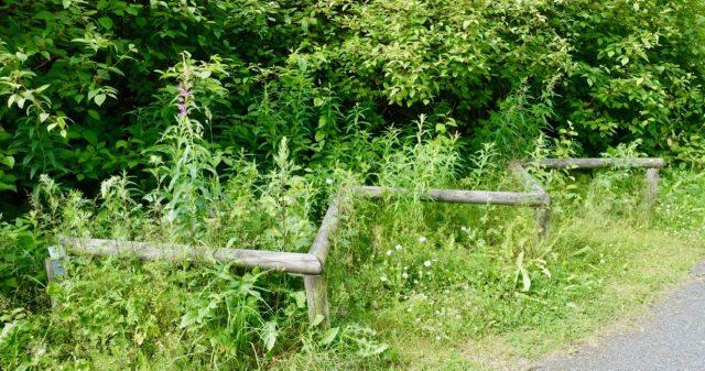 Nedgrodd fysak-stativ i Åmot