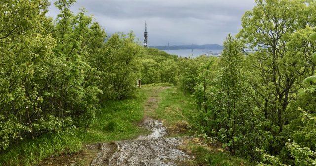 Tårn i Sandnessjøen