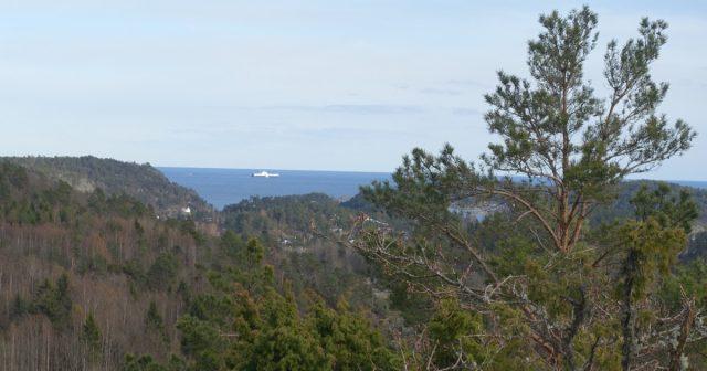 Utsikten fra toppen av Storås