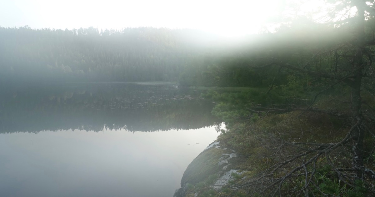 Tåke over vann i Ørland kommune