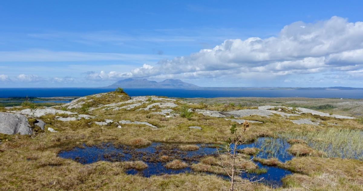 Utsikt i Brønnøy kommune