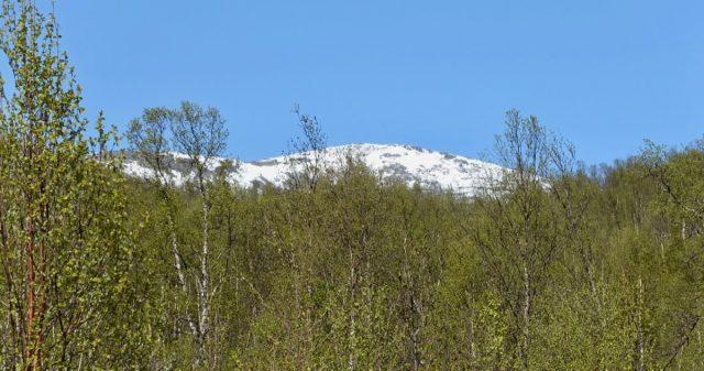 Utsikt i Dyrøy