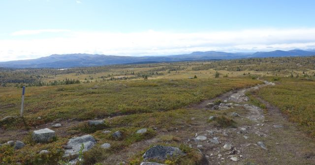 Utsikt fra Hærfjellet i Gausdal