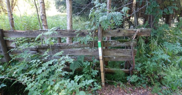 Stolpepost ved Gjøvik