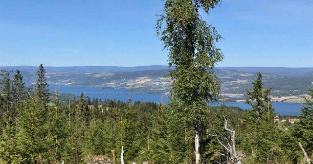 Mjøsutsikt i Gjøvik kommune