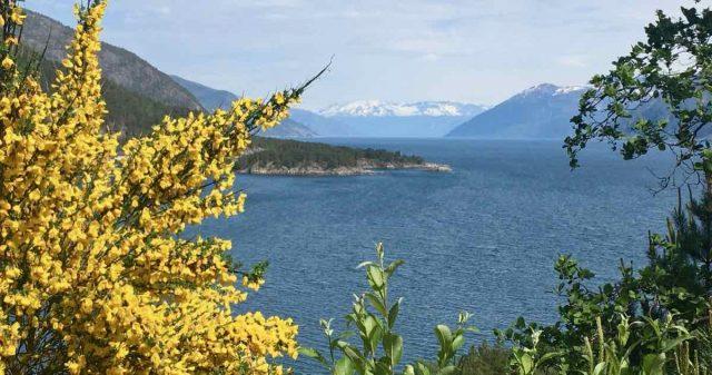 Utsikt nær Høyanger