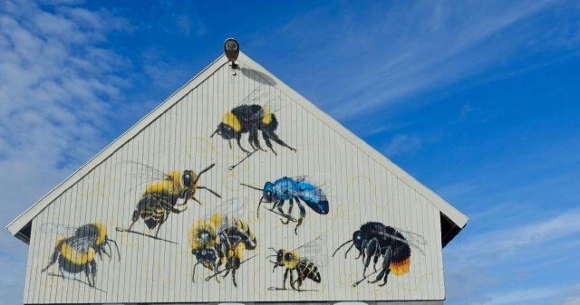 Hus med bier på