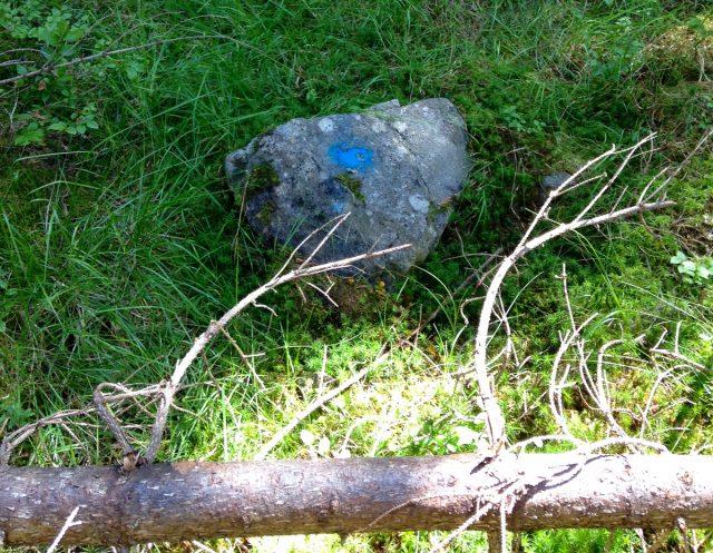 Blåmerking på sti i Hurdal