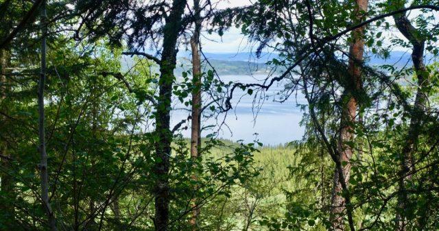 Utsikt Kverkillberget i Inderøy