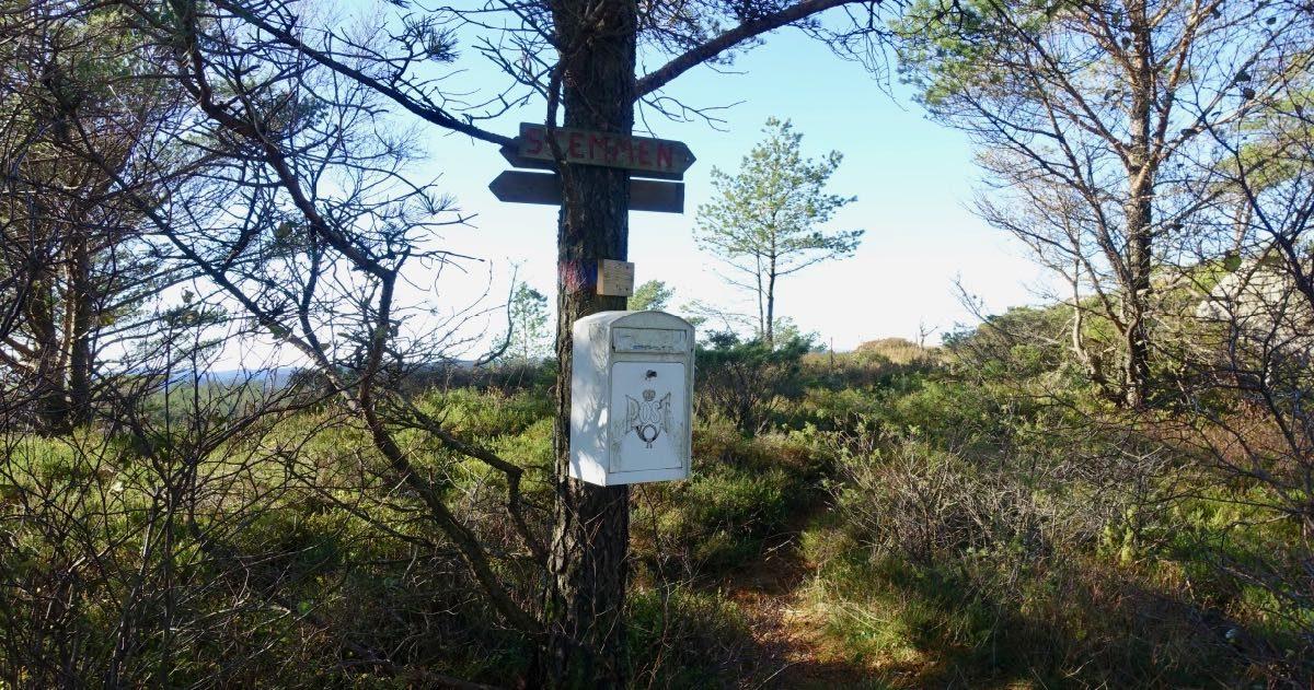 Postkasse i skogen i Kvinesdal