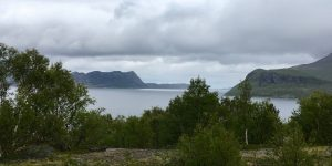 Lurøy kommune