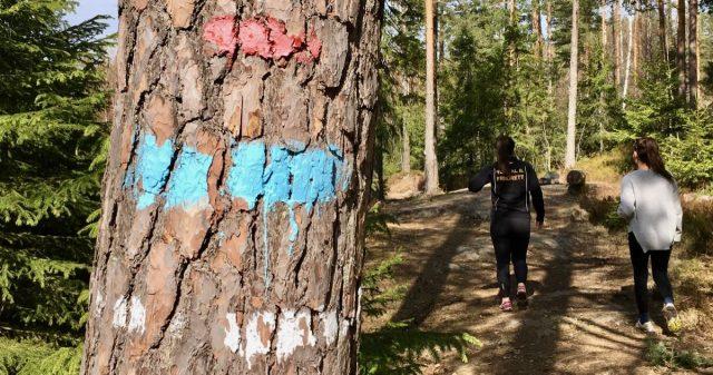 Stimerking på trær