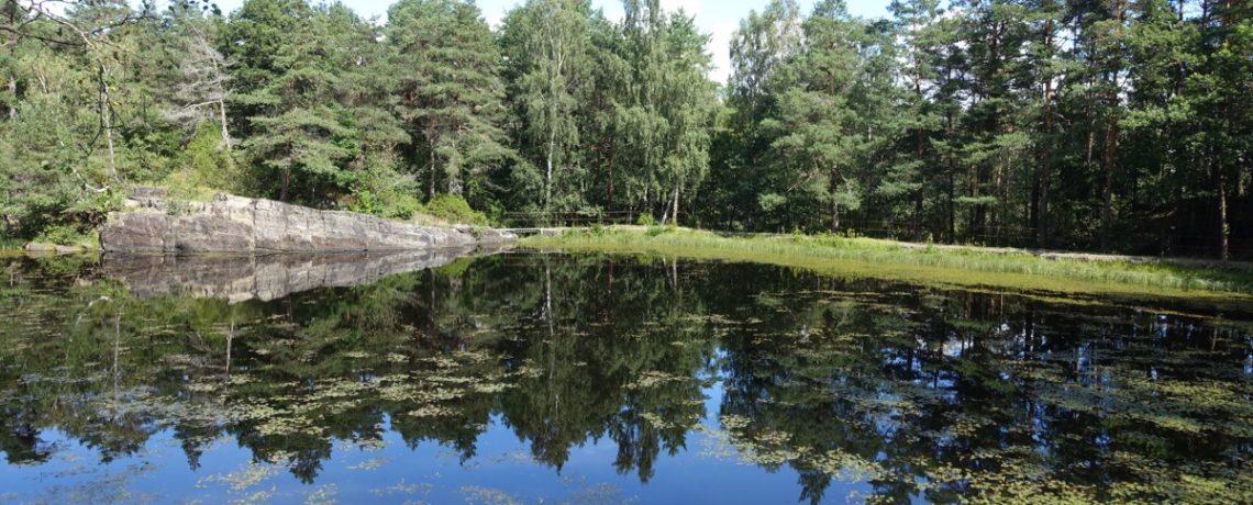 Dammane i Brevik – Porsgrunn kommune