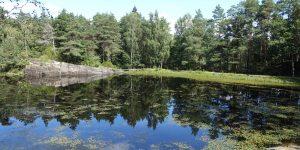 Porsgrunn kommune