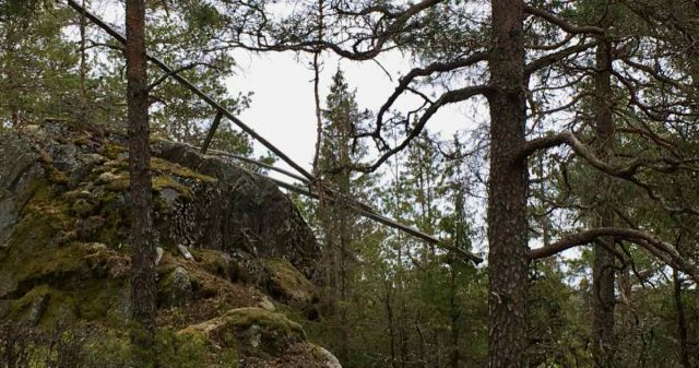 Nedfalt tårn i Rakkestad