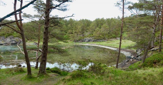 Nautøya i Stord