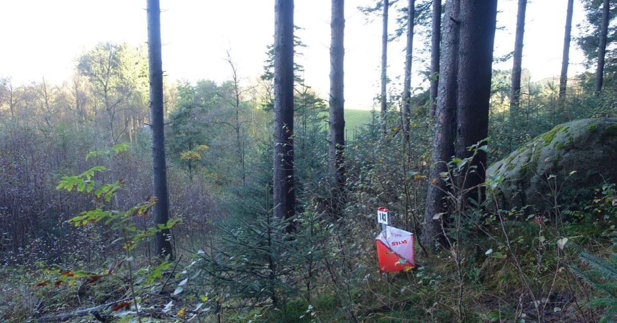 Orientering i Sælandskogen i Time kan være bratt og vilt