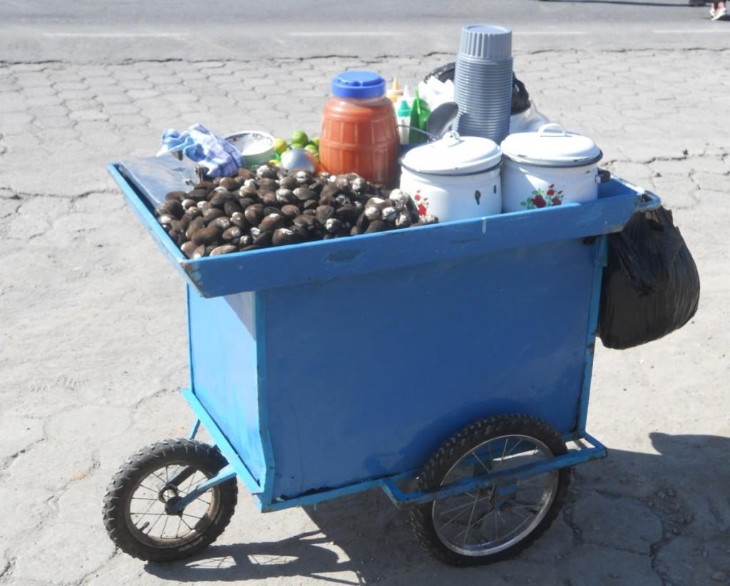 Salgsvogn i Ecuador.