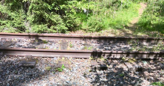 Togskinner fra Valdresbanen